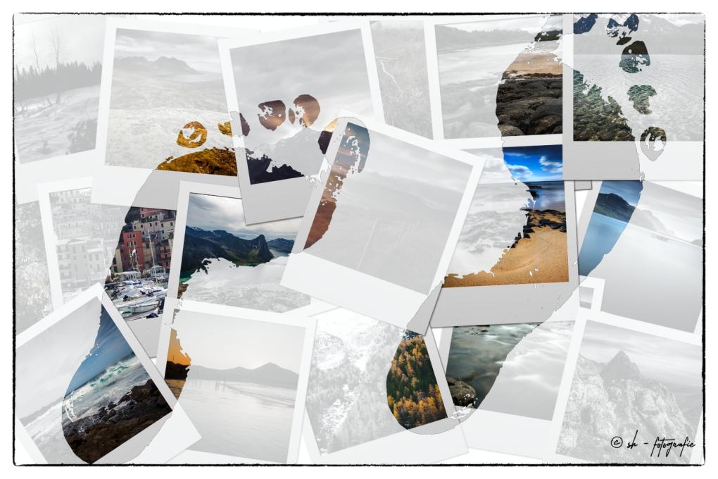 Collage_Thema