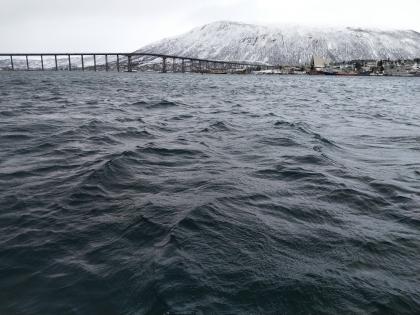 Hafenbecken Tromsø